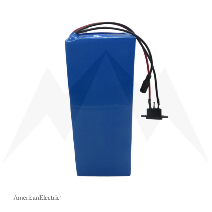 48V 40Ah Rectangle Panasonic Lithium-Ion Battery Pack-AELB014-Ride and Go Electrics