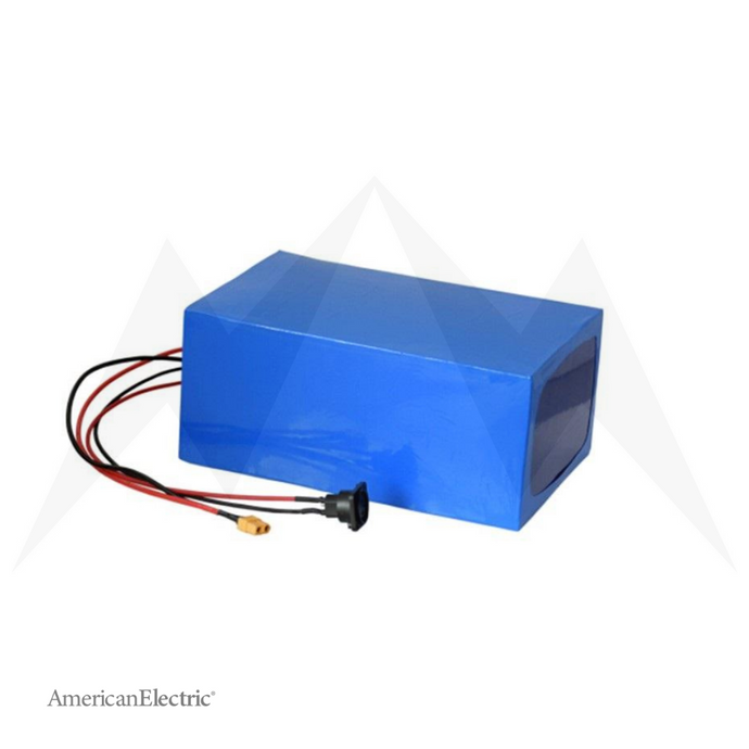 60V 30Ah Lithium-Ion Battery Pack-AELB016-Ride and Go Electrics