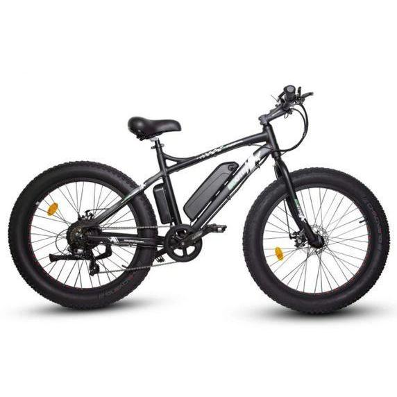 Ecotric Beach Snow Fat Tire Electric Bike (black)