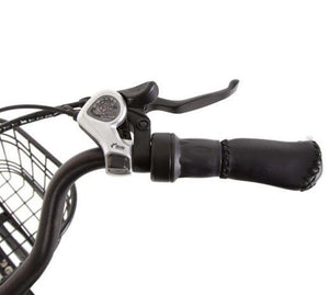 Ecotric Peacedove throttle and shifter
