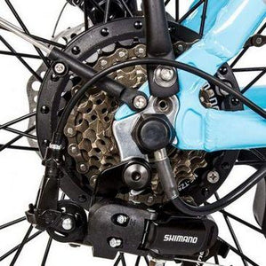 Ecotric Starfish 7-speed Shimano gear