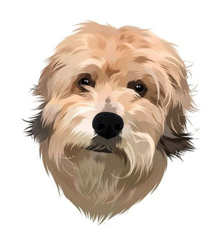 Pet Portrait Digital Art File