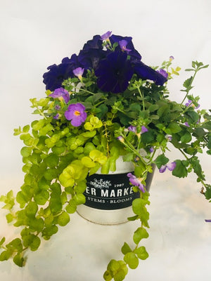 Flower Market Pot