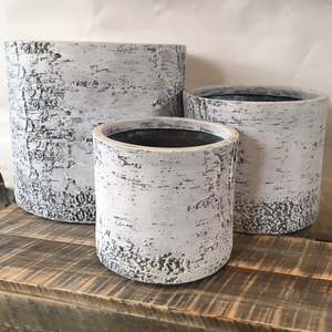 Birch Set of 3