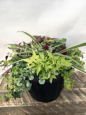 Mix Greenery Planter 13""