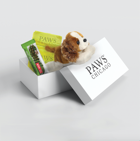 PAWS Chicago Desktop Calendar
