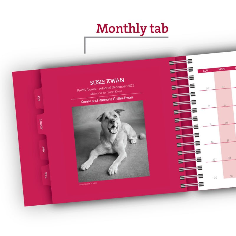 Pet of the Month – PAWS Chicago Desktop Calendar 2021