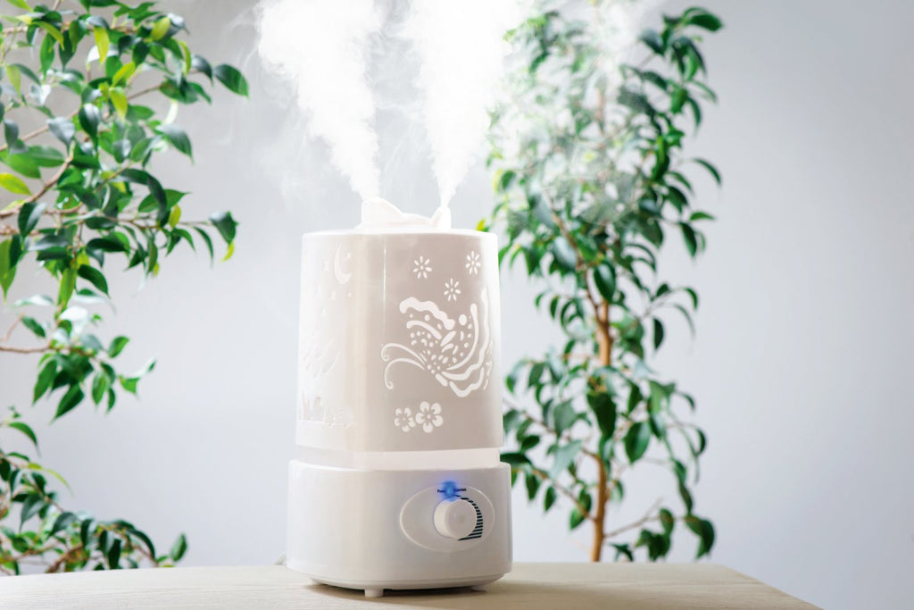Humidificateur VS Déshumidificateur