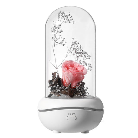 Humidificateur Ultrasons ETERNA - rose