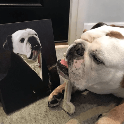 Paw&Bone Pawtrait™ Custom The Count Canvas Custom Portrait - Personalized Gift