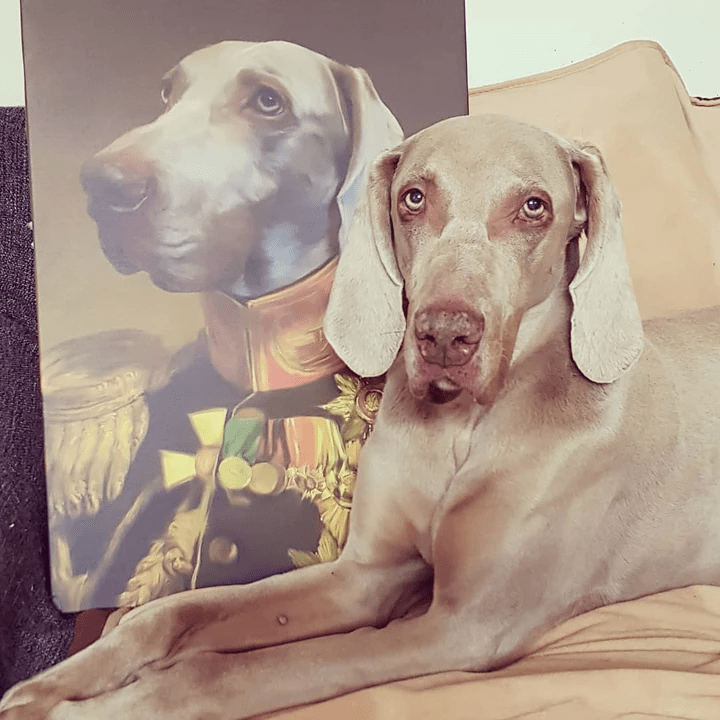 Paw&Bone Pawtrait™ Custom The Veteran Canvas Custom Portrait - Personalized Gift