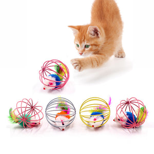 Cat Interactive Cat Cage ball with Feathers and Toy Mouse