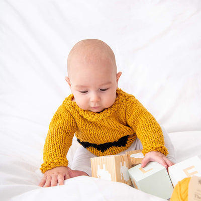 Peanuts: Charlie Brown Baby Sweater Knitting Kit