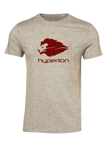 Hyperlion Bushido Origins Mens Grey Gym T Shirt