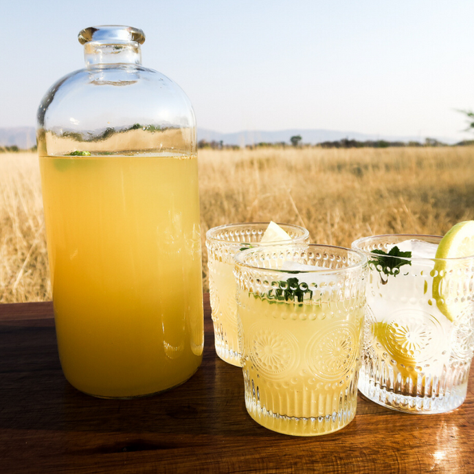 HONEY & GINGER LEMONADE – DELICIOUS DRINK AND IMMUNE BOOSTER