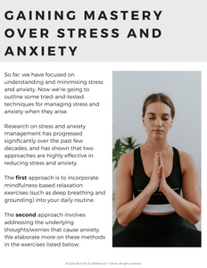 MENTAL WELLBEING - MASTERING STRESS & ANXIETY