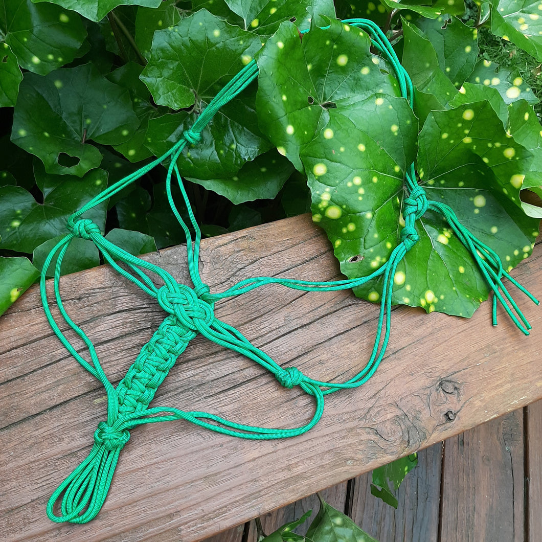 Celtic Halter