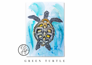 Sea Turtle Watercolour by Rachel Brooks Art