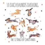 10 Dachshunds Dashing - TD10
