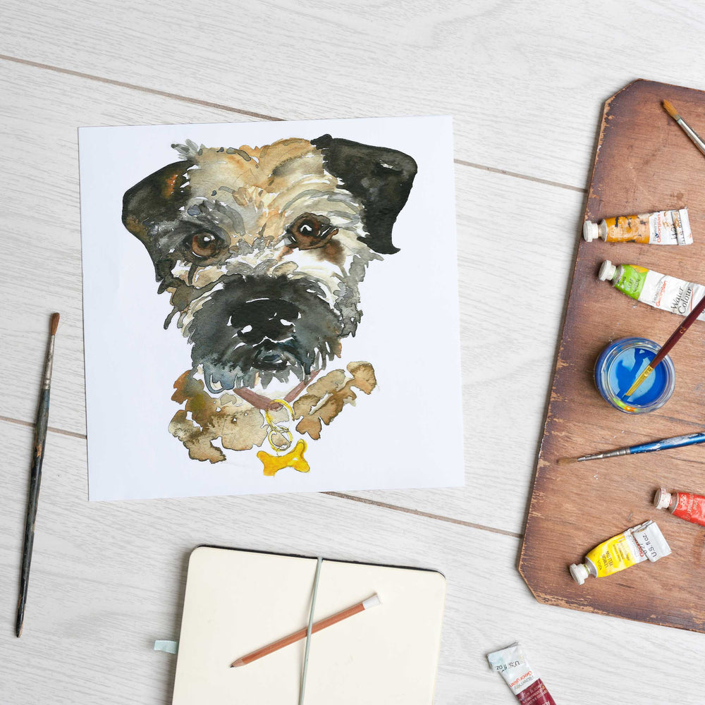 Border Terrier (Mounted Print)