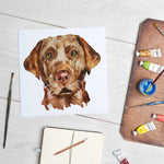 Chocolate Brown Labrador (Mounted Print)