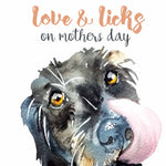 Love & Licks on Mother's Day - U70