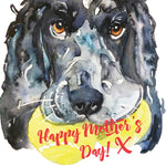 Happy Mother's Day (Spaniel) - U77