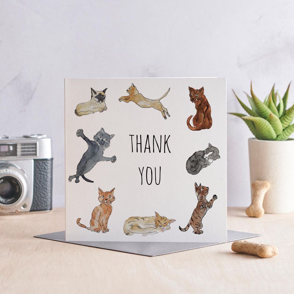 Thank You, Cats - Greeting Card