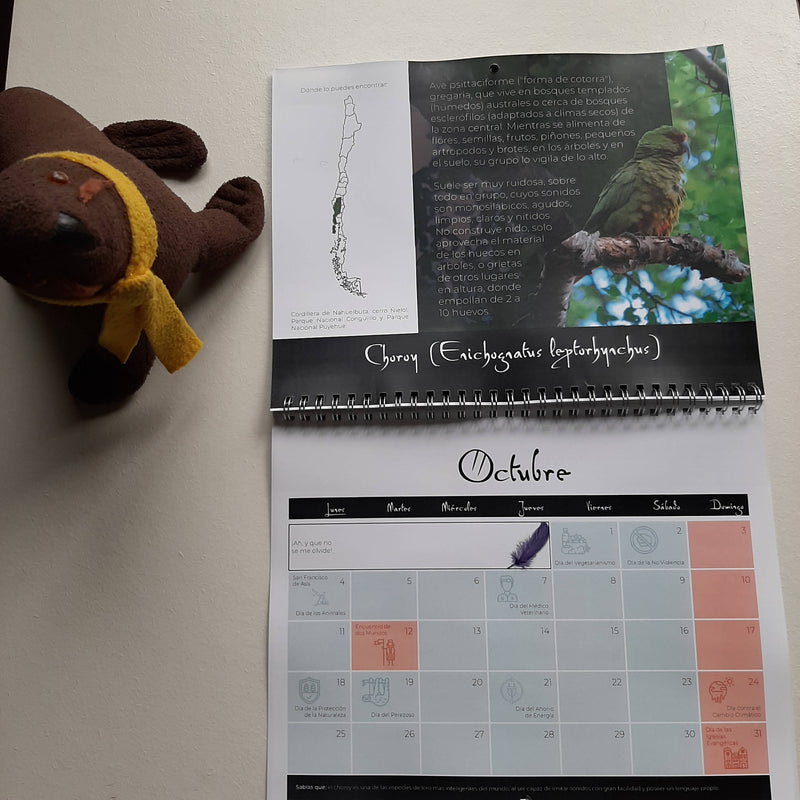 Calendario fauna nativa Chilena 2021