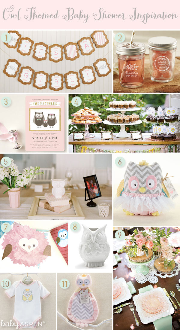 Pink Owl Baby Shower Ideas for a Baby Girl  | Baby Aspen Blog