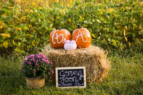 Outdoors | 5 Tips When Throwing a Festive Fall Baby Shower | Baby Aspen
