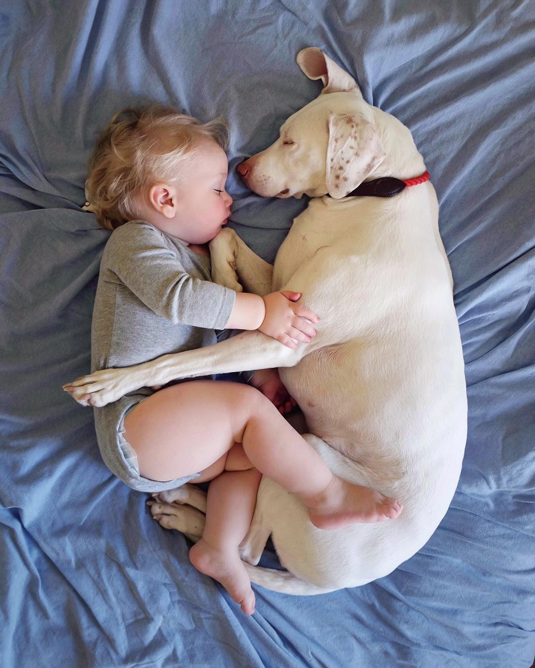 Dog and Baby Cuddling | Photo via Instagram @wellettas | Baby Aspen