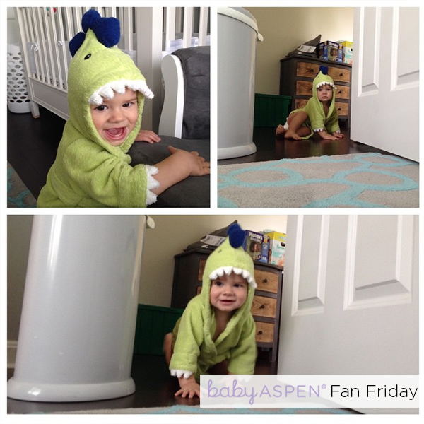 Baby Aspen Fan Friday Dino Robe
