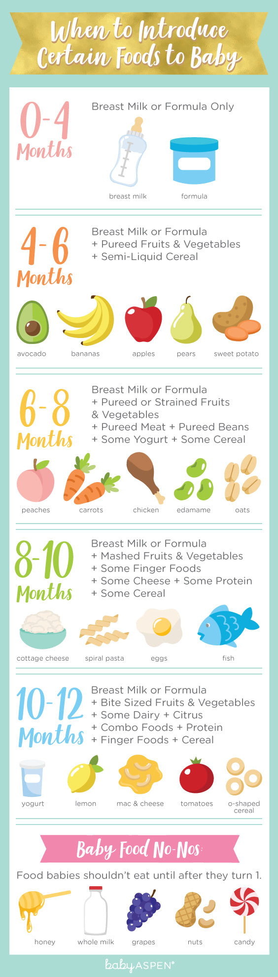 When to Introduce Certain Foods to Baby | Infographic | Baby Aspen