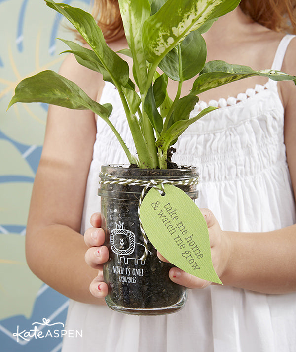 King of the Jungle Birthday Party | DIY Plant Favor Mason Jar | Kate Aspen