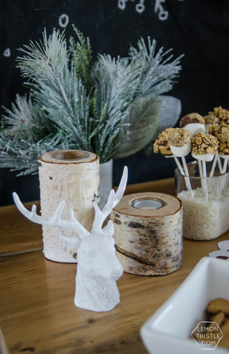 Rustic Winter Wonderland Party | Winter 'One'derland Birthday Party | Baby Aspen