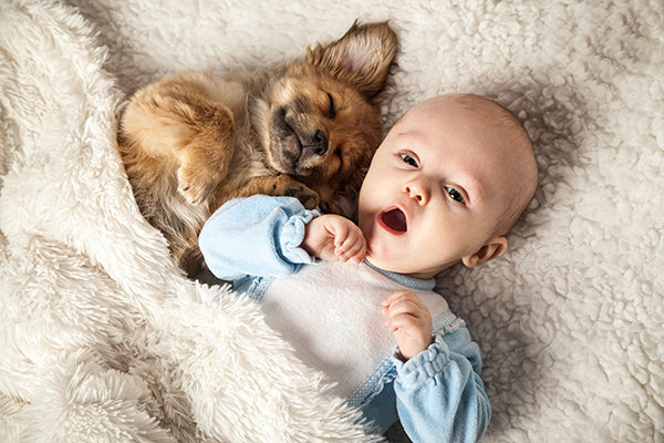Baby and Pup Cozy Under the Covers | Dog and Baby Napping Buddies | Baby Aspen