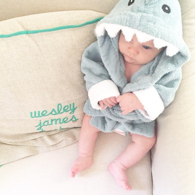 Baby in Shark Robe via @_sarahtucker on Instagram