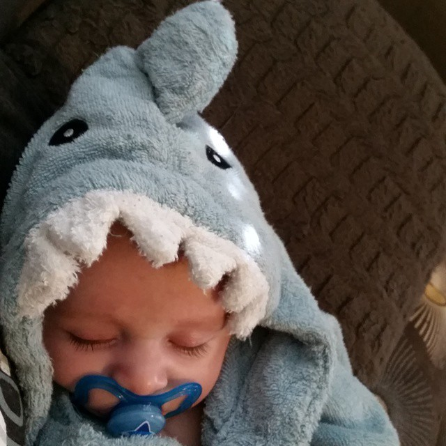 Sleeping Baby in Blue Shark Robe | via @scmitchell12 on Instagram