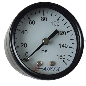 "1/4in Pressure Gauge, Back Connector, 2"" Dial, PSI"