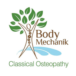 Body Mechanik