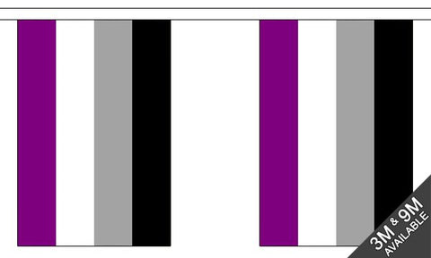 Asexual Pride Bunting- Small ( 3 metres- 10 flags )