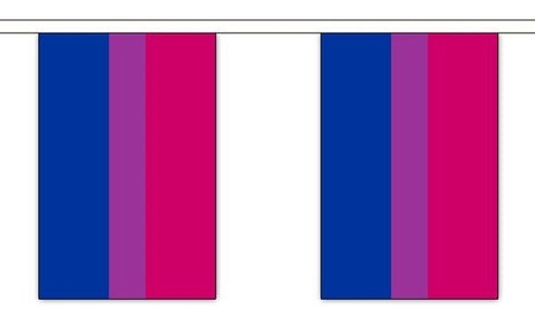 Bisexual Pride Bunting- Large ( 9 metres- 30 flags )