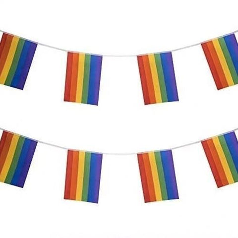 Rainbow Pride Bunting- Small ( 3 metres-10 flags )
