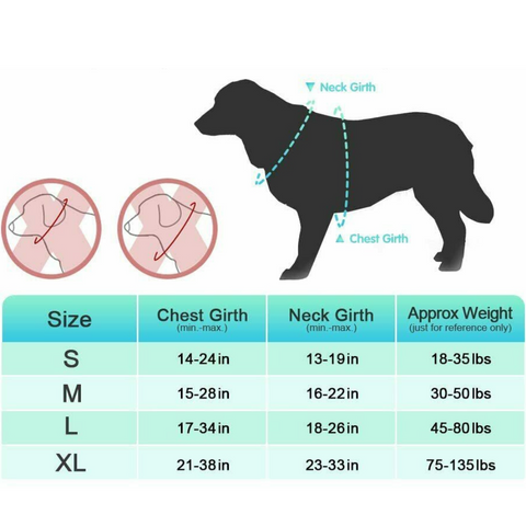 best harness for dogs that pull
