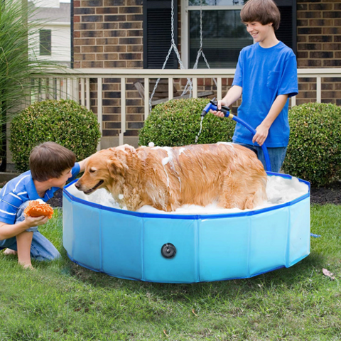 best pet pool