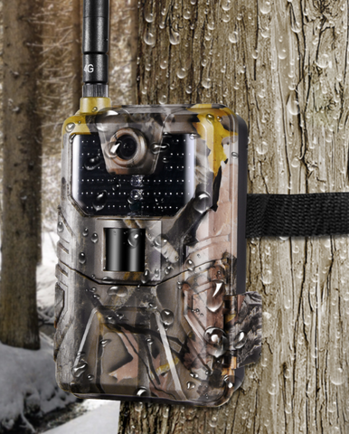 Cellular Wifi Trail Game Camera