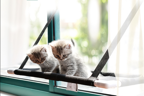 Cat Window Perch Hammock Bed Seat