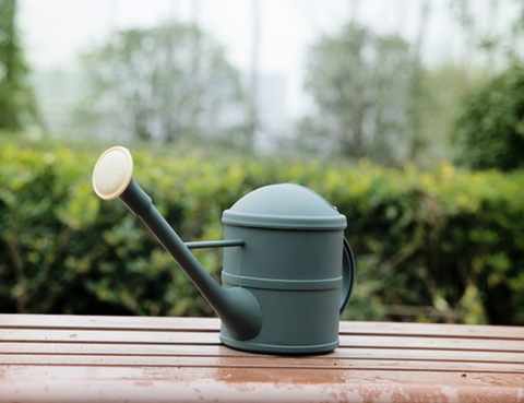 best small watering can