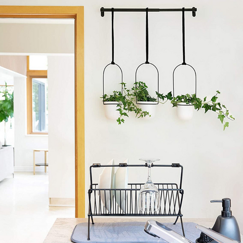 best hanging planter